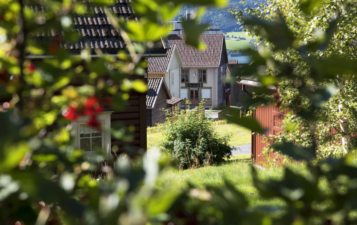 Painted houses in the residential area of Maihaugen.