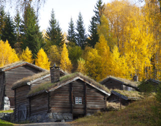 Lodge timber houses with turfed roofs in autumn.